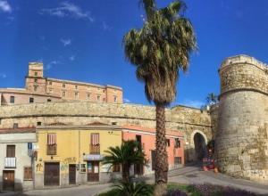 Palme in Altstadt